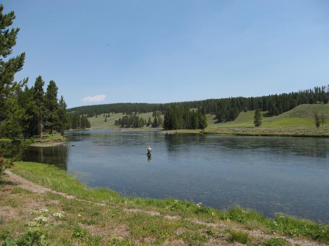 Fishing on the yellowstone river for Yellowstone lake fishing